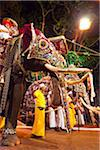 Elephants at the Kandy Perahera Festival, Kandy, Sri Lanka Stock Photo - Premium Rights-Managed, Artist: R. Ian Lloyd, Code: 700-05642341