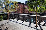 High Line Urban Park, New York City, New York, USA Stock Photo - Premium Rights-Managed, Artist: R. Ian Lloyd, Code: 700-05642530