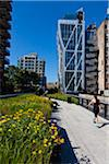 High Line Urban Park, New York City, New York, USA Stock Photo - Premium Rights-Managed, Artist: R. Ian Lloyd, Code: 700-05642535