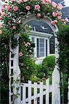 1980s ROSE ARBOR WHITE FENCE GATEWAY TO GARDEN PINK ROSES Stock Photo - Premium Rights-Managed, Artist: ClassicStock, Code: 846-05645712
