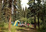 1970s - 1980s FAMILY TENT CAMPSITE IN PINE FOREST BESIDE STREAM