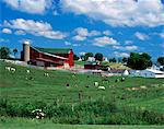 1990s AMISH FARM BUNKER HILL, OHIO Stock Photo - Premium Rights-Managed, Artist: ClassicStock, Code: 846-05646886