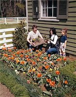 1970s MOTHER FATHER DAUGHTER PLANTING FLOWERS IN GARDEN Stock Photo - Premium Rights-Managednull, Code: 846-05646987