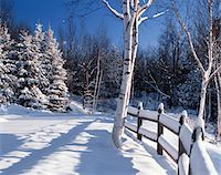 WINTER SCENE IN NORTH CONWAY NEW HAMPSHIRE Stock Photo - Premium Rights-Managednull, Code: 846-05647556