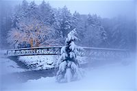 FOOTBRIDGE OVER STREAM IN SNOWY WOODS TREES WITH LIGHT DECORATION Stock Photo - Premium Rights-Managednull, Code: 846-05647563