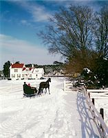 1960s MAN WOMAN COUPLE IN ONE HORSE DRAWN OPEN SLEIGH APPROACHING SNOWY WHITE FARM HOUSE Stock Photo - Premium Rights-Managednull, Code: 846-05647571