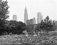 1940s - 1943 CHILDREN WORKING IN VICTORY GARDENS IN ST. GABRIEL'S PARK NEW YORK CITY CHRYSLER BUILDING VISIBLE IN BACKGROUND Stock Photo - Premium Rights-Managednull, Code: 846-05647981