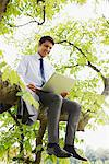 Businessman using laptop on tree branch Stock Photo - Premium Royalty-Free, Artist: Ikon Images, Code: 635-05651428