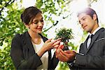 Business people looking at plant together outdoors Stock Photo - Premium Royalty-Freenull, Code: 635-05651450