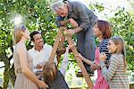 Multi-generation family harvesting apples in orchard Stock Photo - Premium Royalty-Free, Artist: Blend Images, Code: 635-05656425