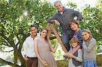 family apple orchard - Portrait of smiling multi-generation family on ladder in orchard Stock Photo - Premium Royalty-Freenull, Code: 635-05656490