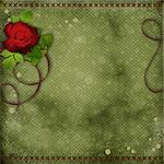 beautiful green background with red rose