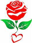 Illustration art of red rose with isolated background