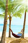 Holidays. Empty hammock between palm trees Stock Photo - Royalty-Free, Artist: Vixit                         , Code: 400-05669921