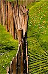 A wood fence in a garden Stock Photo - Royalty-Free, Artist: Dutourdumonde                 , Code: 400-05670081