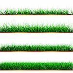 Green color grass illustration isolated on white Stock Photo - Royalty-Free, Artist: marphotography                , Code: 400-05671252