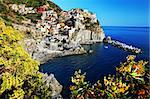 Manarola village, Cinque Terre, Italy, Europe Stock Photo - Royalty-Free, Artist: rechitansorin                 , Code: 400-05672836