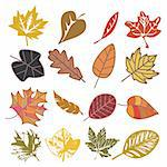 set of autumn leaves isolated on white Stock Photo - Royalty-Free, Artist: SelenaMay                     , Code: 400-05673373