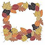 autumn frame made from vector leaves Stock Photo - Royalty-Free, Artist: SelenaMay                     , Code: 400-05673378