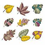 set of autumn leaves isolated on white Stock Photo - Royalty-Free, Artist: SelenaMay                     , Code: 400-05673517