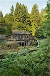 Historic Grist Mill in Forest along Cedar Creek in Washington State