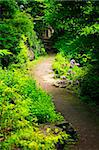 Hiking trail in a sunlit forest in Ontario Canada Stock Photo - Royalty-Free, Artist: Elenathewise                  , Code: 400-05677051