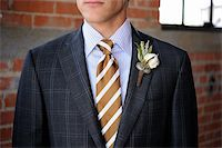Image of a Gray Plaid suit with tan stripes and boutonniere Stock Photo - Royalty-Freenull, Code: 400-05678501