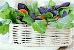 fresh spring salad with tomatoes and green salad Stock Photo - Royalty-Free, Artist: Dream79                       , Code: 400-05678995