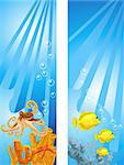 Background illustrations of tropical underwater scene Stock Photo - Royalty-Free, Artist: dayzeren                      , Code: 400-05679392