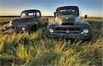 Vintage Farm Trucks Saskatchewan Canada weathered and old Stock Photo - Royalty-Free, Artist: pictureguy                    , Code: 400-05679791