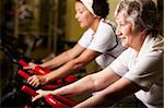 Two senior women training in gym Stock Photo - Royalty-Free, Artist: pressmaster                   , Code: 400-05680477