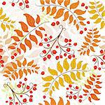 Autumn seamless decorative floral pattern with colorful leaves (vector) Stock Photo - Royalty-Free, Artist: OlgaDrozd                     , Code: 400-05681021