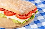 Close-up of an italian panino (sandwich) with freshly baked ciabatta bread, lettuce, cheese and tomato, Shallow DOF, selective focus. Stock Photo - Royalty-Free, Artist: citylights                    , Code: 400-05684401