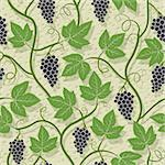 Grape, vine on wall growing seamless pattern Stock Photo - Royalty-Free, Artist: 100ker                        , Code: 400-05690233