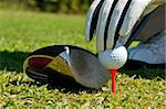 Hand placing a golf ball on a tee, next to a club. Stock Photo - Royalty-Free, Artist: ruigsantos                    , Code: 400-05690356