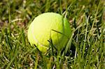 Tennis ball on a grass field Stock Photo - Royalty-Free, Artist: ruigsantos                    , Code: 400-05690369