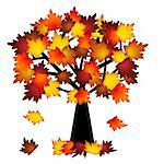 Colorful Fall Leaves on Tree Illustration in Autumn Stock Photo - Royalty-Free, Artist: jpldesigns                    , Code: 400-05692685