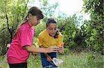 Sibling Girls Hunting for Insects While Camping Outdoors Stock Photo - Royalty-Free, Artist: tobkatina                     , Code: 400-05693355