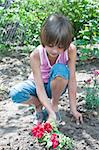Sweet little girl in the garden care for flowers. Stock Photo - Royalty-Free, Artist: dvarg                         , Code: 400-05693389