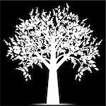 Beautiful art tree isolated on black background Stock Photo - Royalty-Free, Artist: inbj                          , Code: 400-05693965