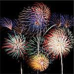 Multicolored fireworks fill the square frame Stock Photo - Royalty-Free, Artist: sgoodwin4813                  , Code: 400-05699068