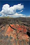 Amazing volcanic landscape at Craters of the Moon National Monument of Idaho. Stock Photo - Royalty-Free, Artist: Wirepec                       , Code: 400-05705130