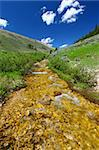 Pristine mountain stream flows through the Bighorn National Forest - USA. Stock Photo - Royalty-Free, Artist: Wirepec                       , Code: 400-05705155