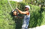 Gardener by work with saw. Stock Photo - Royalty-Free, Artist: RUZANNA                       , Code: 400-05705697