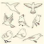 Set of differnet sketch bird. Vector illustration for design use. Stock Photo - Royalty-Free, Artist: angelp                        , Code: 400-05706563