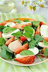Traditional Italian Caprese Salad mozzarella with tomatoes and basil Stock Photo - Royalty-Free, Artist: Dream79                       , Code: 400-05715468