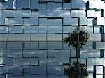 tree reflect in chrome cubes wall - 3d illustration Stock Photo - Royalty-Free, Artist: drizzd                        , Code: 400-05716890