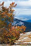 October Carpathian mountain Borghava plateau with first winter snow and autumn colorful foliage