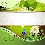 Green background with daisy and drops of water Stock Photo - Royalty-Free, Artist: Merlinul                      , Code: 400-05720675