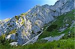 mountain slope in Piatra Craiului Mountains, Romania Stock Photo - Royalty-Free, Artist: porojnicu                     , Code: 400-05721207